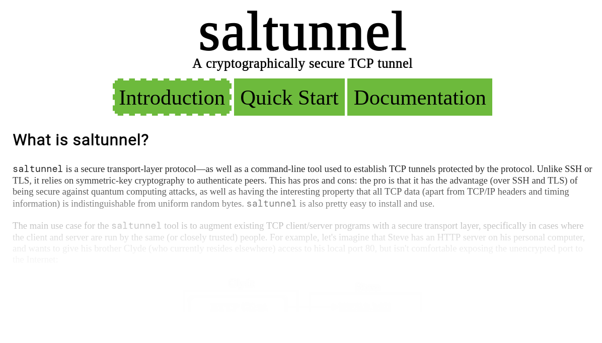 Image of saltunnel.io page.